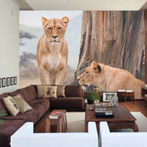 Leonas sabana africana