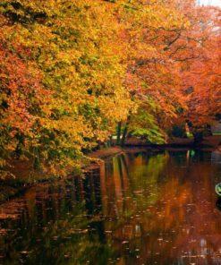 fotomural otoño