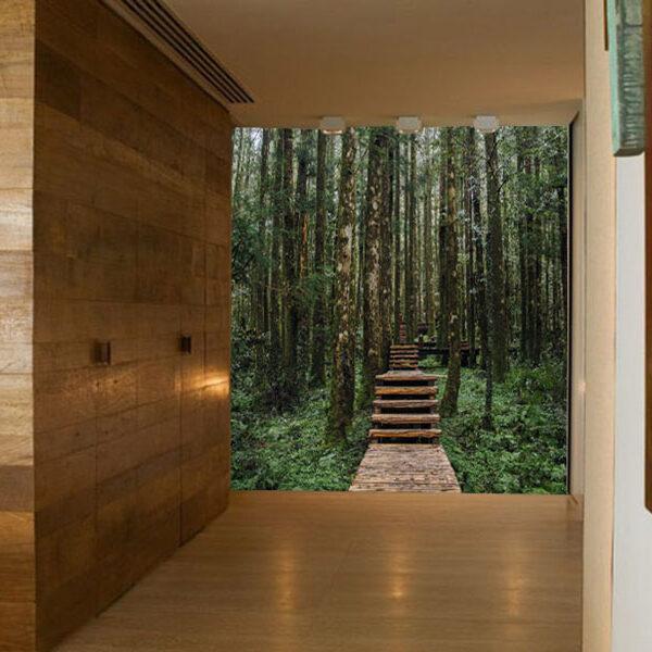 fotomurales caminos para decorar ambientes